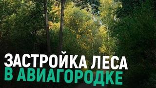 Хотят ли жители застройки леса в Авиагородке?