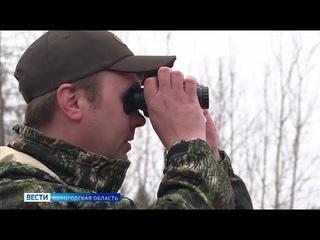 Более 50 вологодских охотников оштрафовали с начала промыслового сезона