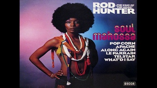 Rod Hunter - Yellow Submarine (The Beatles Moog Cover)