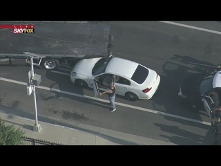 LAPD Pursuit