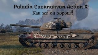 Paladin Caernarvon Action X Гайд!