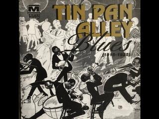 Tin Pan Alley Blues 1916 - 1925 (audio)