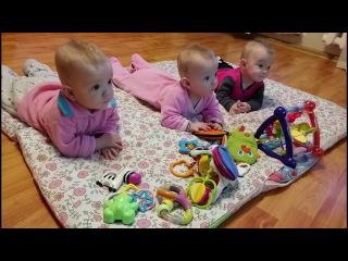 За будущее своих детей проголосовали родители вологодских тройняшек Ольга и Александр Баланичевы