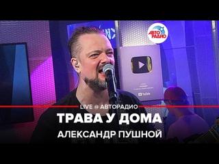 Александр Пушной - Трава у Дома ( Земляне  cover) LIVE @ Авторадио