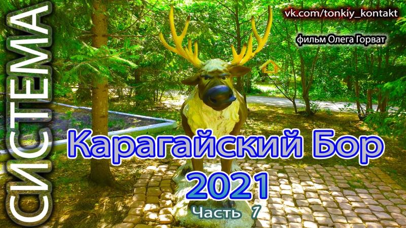 Карагайский бор 2021 часть 1