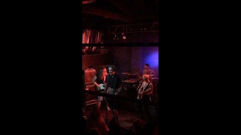 Видео от псарня