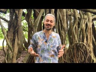 Video từ Alexander Oxtapenco