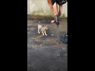 Videó: Irina Polyakova