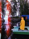 Фотоальбом Алёны Шишковой