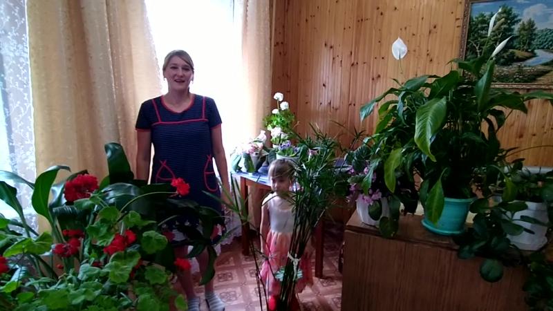 Как ухаживать за комнатными растениями . Файзуллина Р.Р.