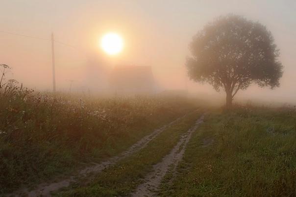 В Оренбургской области ожидается туман 20 сентября...