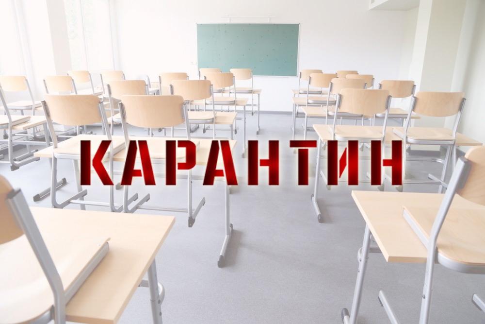 В Петровском районе на карантин по ОРВИ и COVID-19 закрыто несколько классов в школах и групп в детских садах