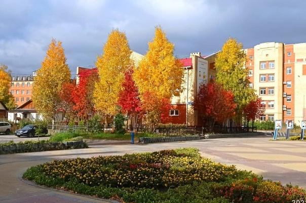Разноцветная осень в Ханты-Мансийске🌿🍂🌾🍁🌸Фото Милы...