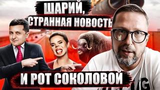 Запрет въезда в ЕС и рот Янины Соколовой