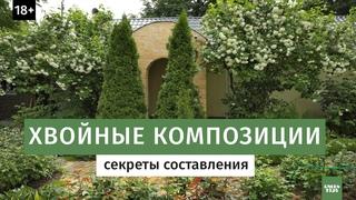 Хвойная композиция в саду. Секреты составления.